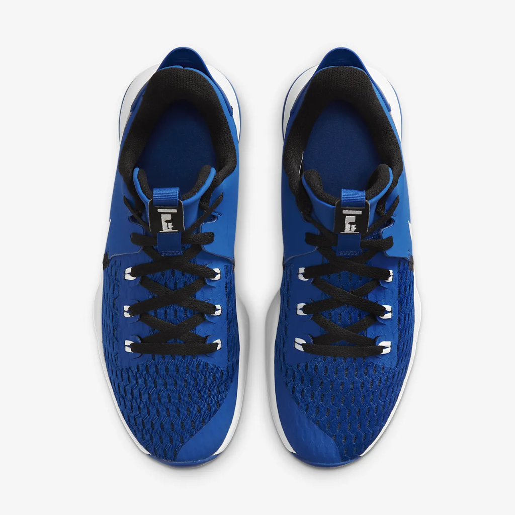 LeBron Witness 5 Basketball Shoes CQ9380-400