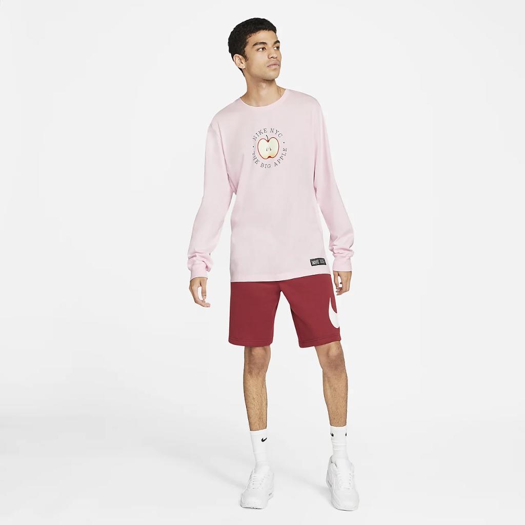 Nike Sportswear Men's Long-Sleeve T-Shirt DD8975-663